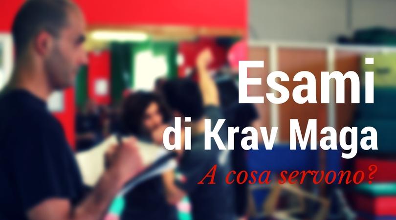 Esami di Krav Maga. A cosa servono?